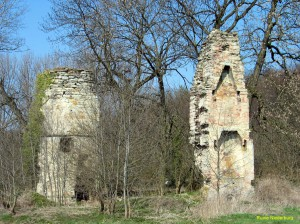 119_1902-Ruine Niederburg - 903 p
