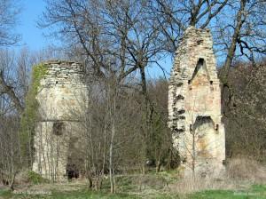 119_1902-Ruine Niederburg